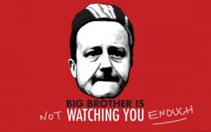 big-brother-cameron