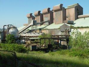 mill overgrown